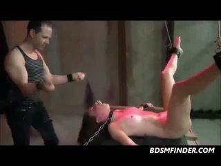 Tied spread spanked dhe toyed, falas wasteland porno video 81