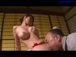japoński, puma, stary