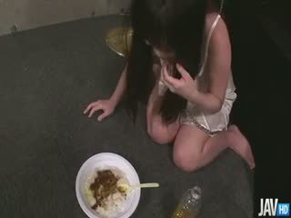 服從的 nene masaki 是 being trained 到 吃 出 的 一 bowl