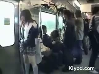 Public tren nud