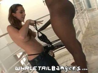 assfucking, gros seins, anal