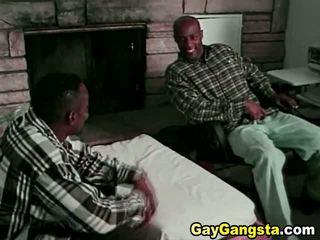 समलैंगिकों, स्टड्स, gay black