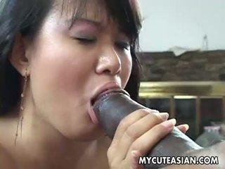 Ireng dude has a hot asia maly to ndadekake morat-marit
