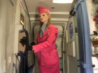 منتظم, air hostesses