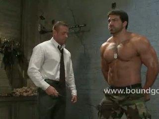 homosexuál, sval, kůže