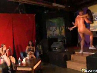 ruskeaverikkö, hauska, tanssi