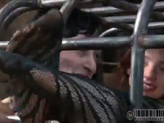 Elise graves en lockdown