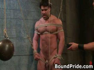 gay, gagged, bound