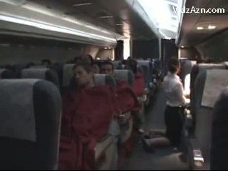 Tiếp viên giật passenger & tasting của anh ấy con gà trống
