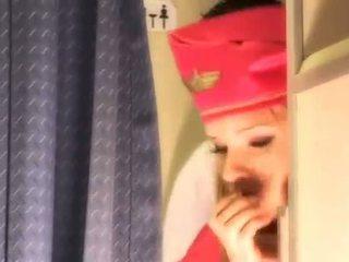 טרי אחיד, כל air hostesses לבדוק