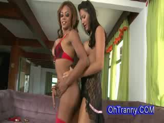 Two hot and perky trannies
