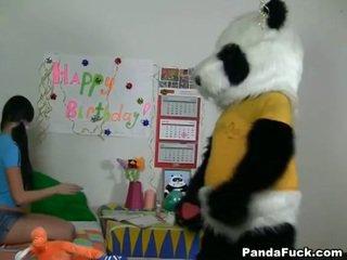 Panda gets צעיר נוער בייב