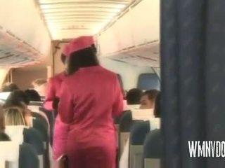 Fierbinte airlines blonda