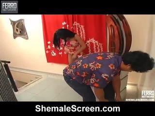 मिश्रण की movs द्वारा शीमेल स्क्रीन