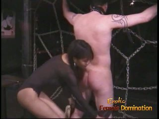 Extremely rallig stallion likes being tied nach oben und whipped
