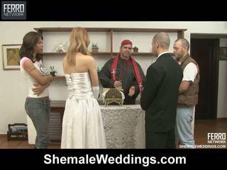 Alessandra tony shelady boda sexo