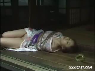 Asiatiskapojke shabari träldomen sammanställning