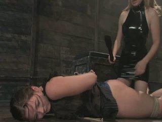 hardcore sex, nice ass, bisexual porn