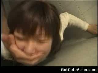 公 厕所 日本语 他妈的