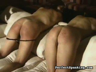 nice ass, big tits, bondage sex