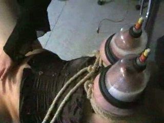 To cho con bú ngực trong vacuum