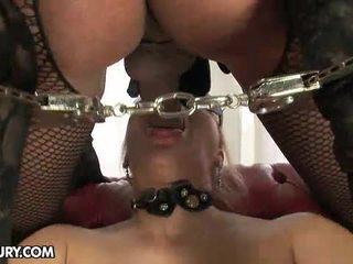 tranny, beste hd porn ideal, shemale sex