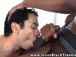 Black shemale blows her studs cock in her kitchen