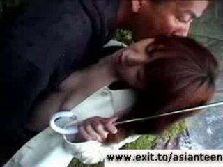 18 years Japanse Sakura in Public Park Video