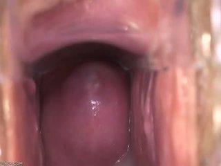 Усередині вагіна