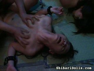 Seksikäs kokoelma of rasva x rated porno movs alkaen shibari dolls