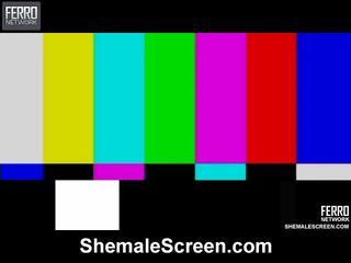 Caldi shemale schermo film starring sharon, monique, agata