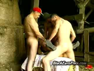 Old farm men stretch lonely little ebony at the barn