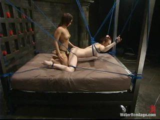 ideal bondage nice, watch bondage sex more, tied-up online