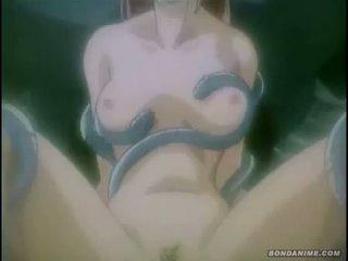 Lovely maid gets captured nasty