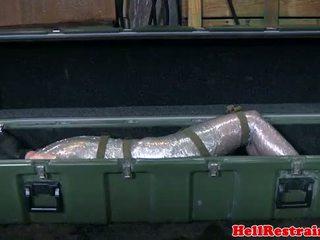 Mummified posłuszne learns discipline