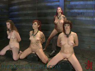 hd porn, bondage sex, discipline