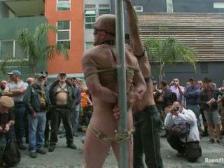 Dore Alley Pig1