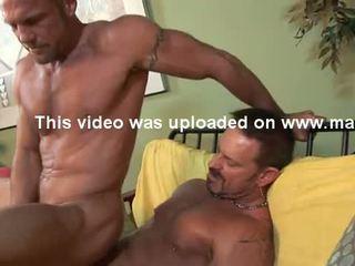 голям пенис, мускул, мускулест
