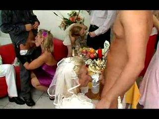 fan, avsugning, bride