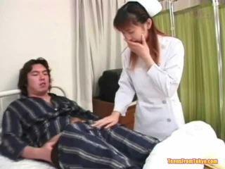 ιαπωνικά, κοτοπουλάκι, αίγλη