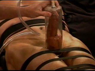 big dick, muscular, couro