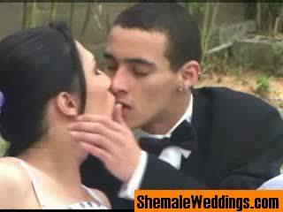 Shemale Trans wedding