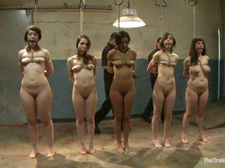 性感 females 有 他們的 vags toyed 在 一 淫 sadism 電影