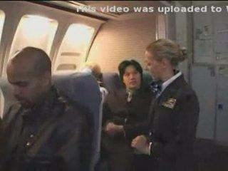 American stewardess 2