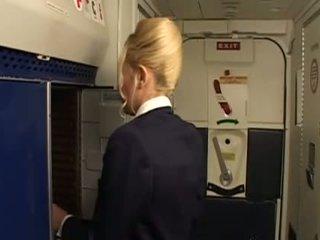 üniforma, stewardess