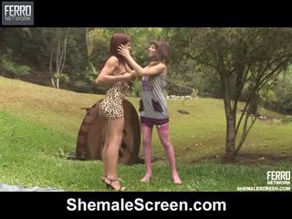 shemale, směs, shemale sex