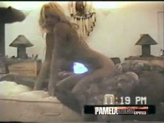 Pamela anderson pohlaví porntape s brett michaels