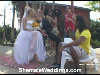 Alessandra shemale sposa su video