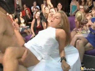 brunetta, cazzo, divertimento